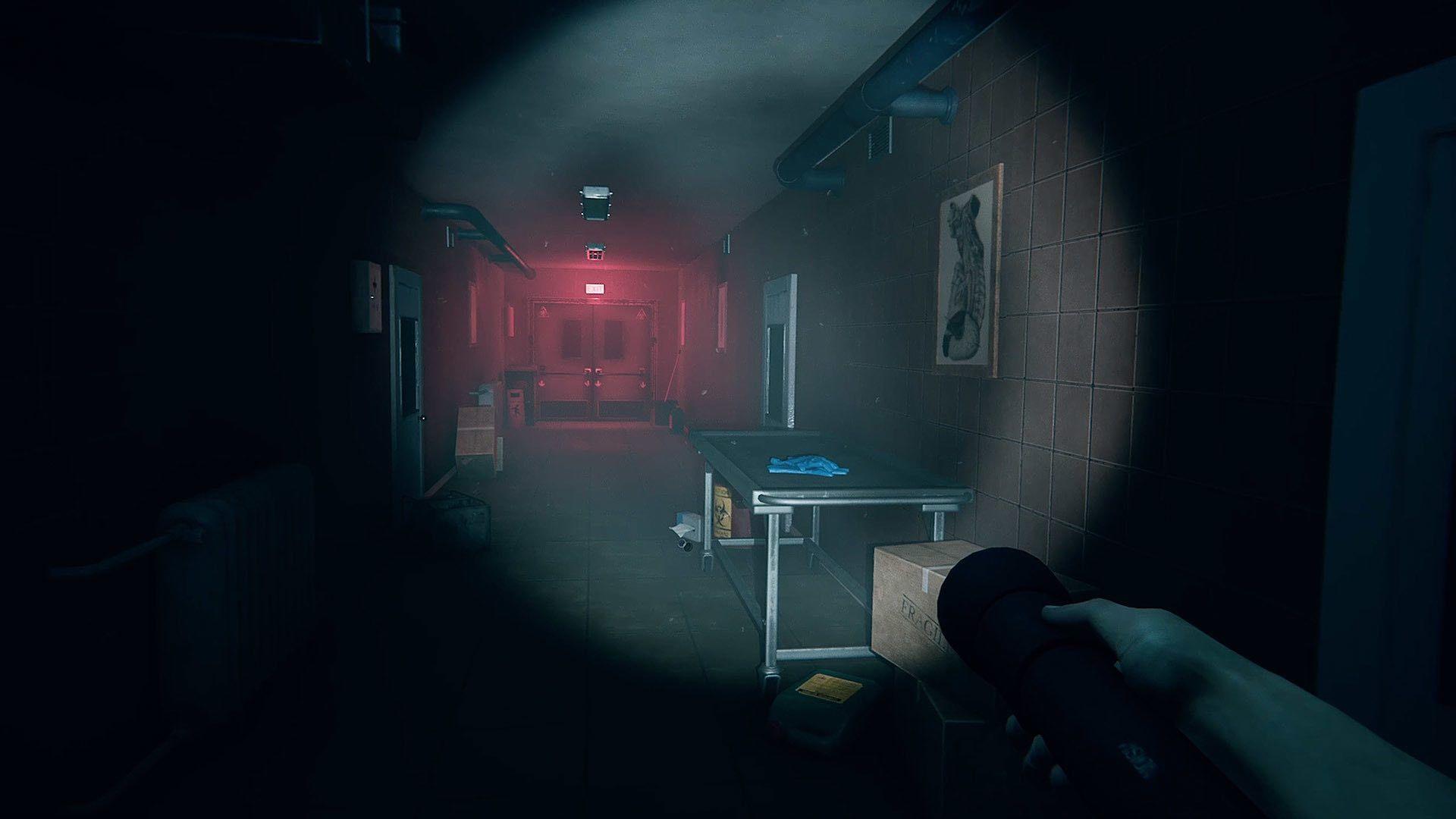 Woodland Games anuncia su (macabro) próximo título: Autopsy ...